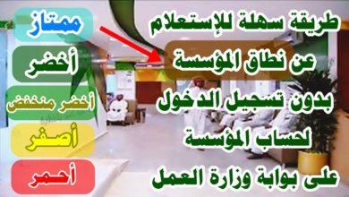 Photo of الاستعلام عن نطاق المؤسسة برقم الاقامة عبر موقع وزارة العمل السعودية
