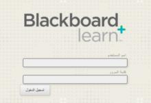 Photo of بلاك بورد الكلية التقنية : الخدمات التي يقدمها وطريقة التسجيل